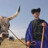 the-goulash-aka-herdsmen