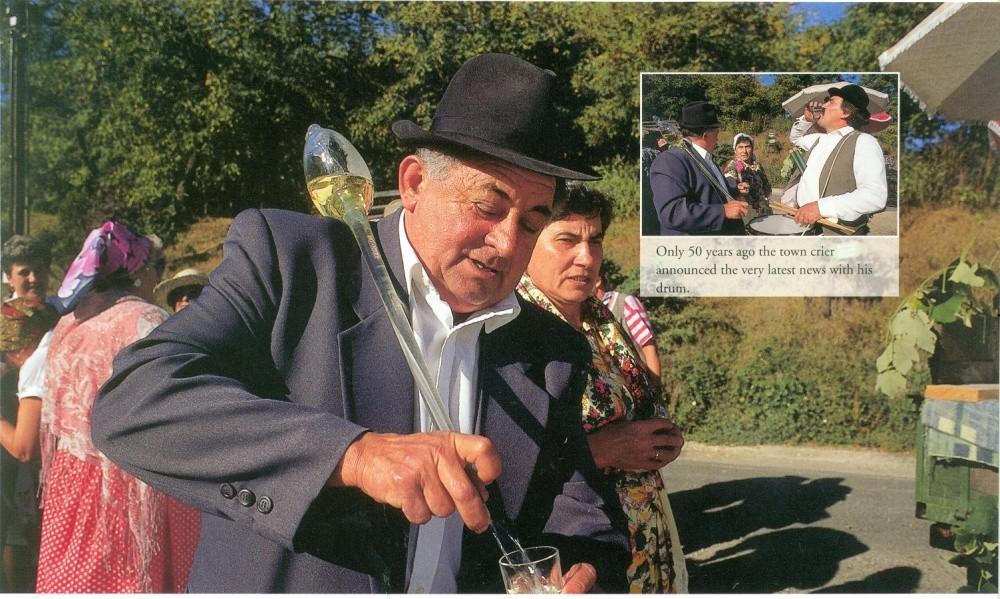 Hungarian wine 2