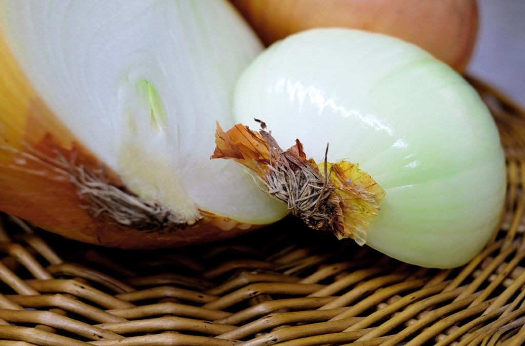 onion-1144627_1280