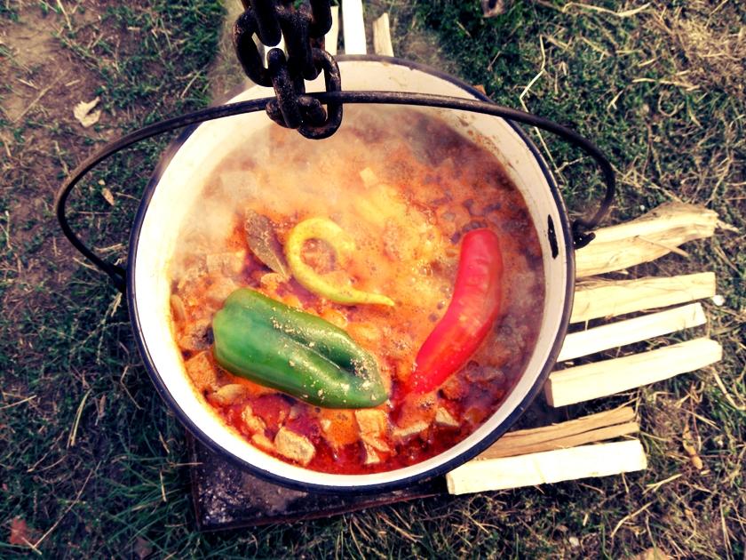 hungarian goulash history